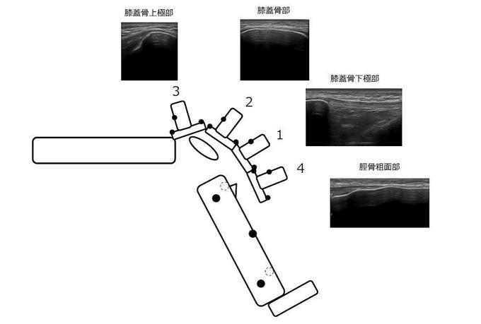 吉田先生図2.jpg